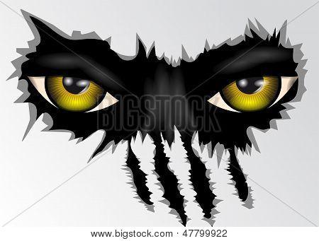 Eyes Look