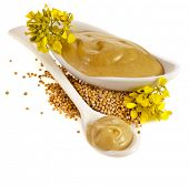 image of mustard seeds  - Mustard dish sauce  - JPG
