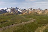 stock photo of denali national park  - denali national park scenic view in summer - JPG