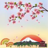 stock photo of sakura  - Beautiful background in japanese style with sakura blossom  - JPG