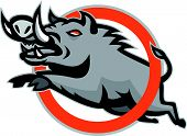 picture of razorback  - Illustration of a wild pig boar razorback jumping through a ring or circle on isolated background done in retro style - JPG