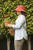 picture of pot-bellied  - Pregnant woman holding potted plant  - JPG