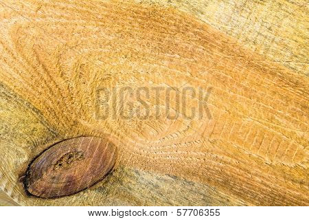 Texture Pine Wood Plank High Detailed