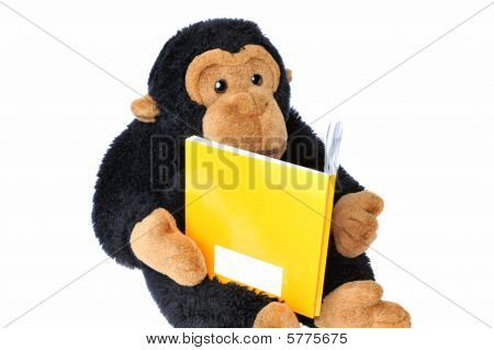 Monkey with book