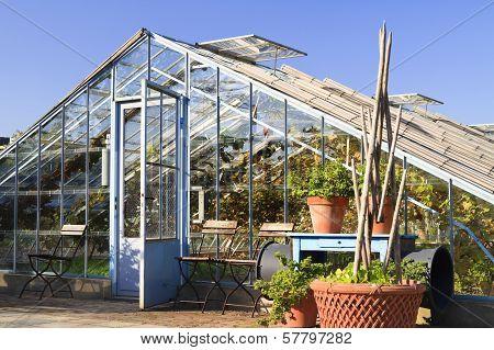 Greenhouse In Garden Villa Augustus