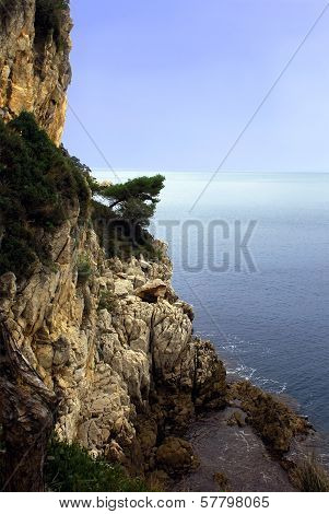 Steep cliff rising above the sea