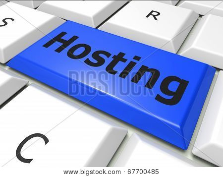 Online Hosting Means World Wide Web And Computer