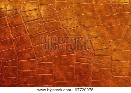Polish Leather