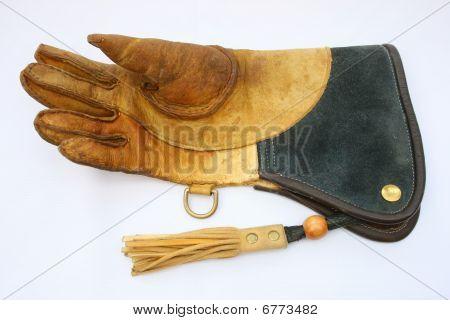 Falconry glove