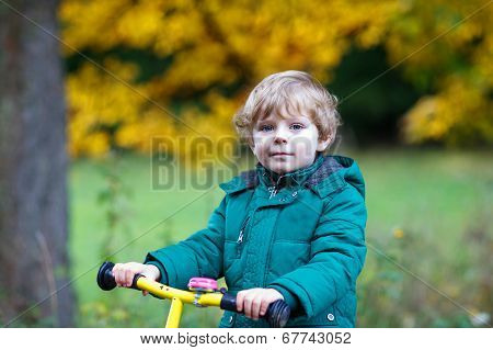 Cute Active Preschool Boy Driving On His Bike In Autumn Forest