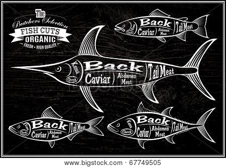 Diagram Cut Carcasses Salmon, Swordfish, Herring, Tuna