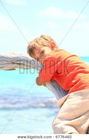 Boy On A Tree