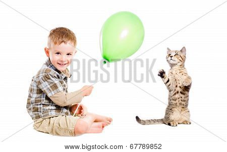 Cheerful boy and cat Scottish Straight play balloon