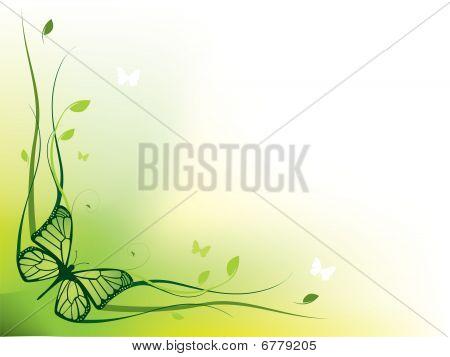 Elegant floral border