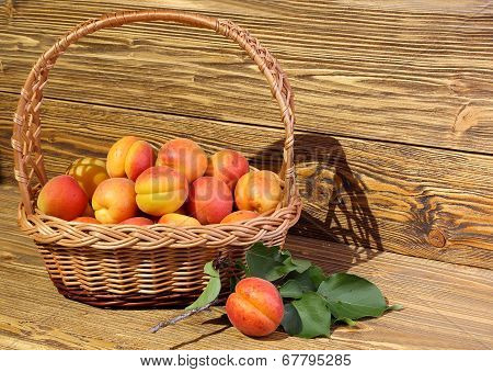 Apricots In A Wicker Basket
