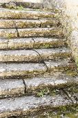 stock photo of blunt  - Old stone steps invaded by vegetation due to the passage of time - JPG