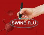 stock photo of swine flu  - writing word SWINE FLU with marker on red background made in 2d software - JPG