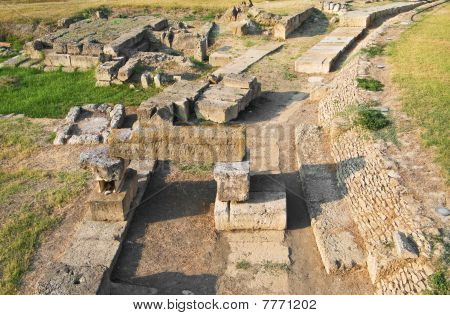 National Archaelogical Park. Metapontum. Basilicata.