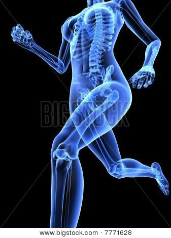 female jogger - x-ray