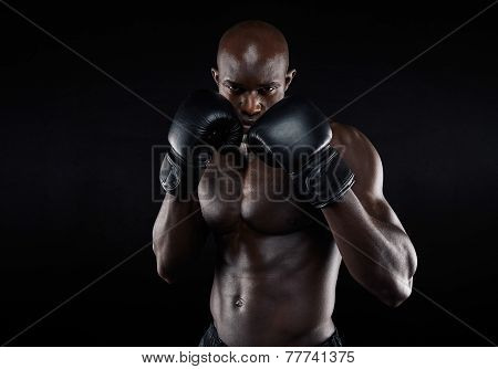 Professional Fighter Ready For Fight