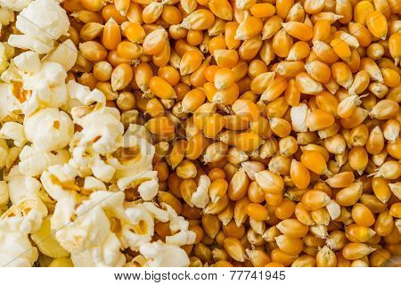 Pile Of Popcorn And Ripe Corn