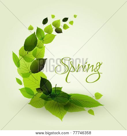 Fresh spring abstract floral background - circle from green leafs with place for your text