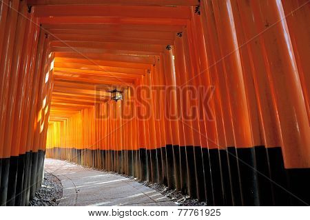 Fushimi Inari Taisha Shrine In Kyoto, Japan