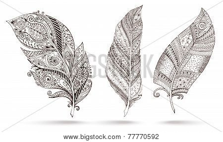 Artistically drawn, stylized, vector feathers