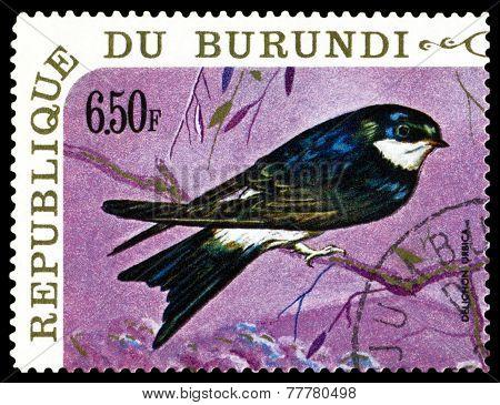 Vintage  Postage Stamp. Bird  House Martin.