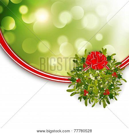 Christmas  Mistletoe Frame