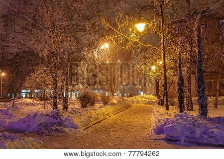 Winter park in the evening covered with snow