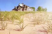 pic of dune grass  - Dune grasses with beach house  in the distance - JPG