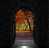 image of entryway  - Old arched church doors opening out onto beautiful colorful forest - JPG