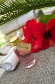 foto of hibiscus  - A bottle of hibiscus shampoo - JPG
