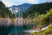 pic of shan  - Kaindy Lake in Tien Shan mountain Kazakhstan - JPG