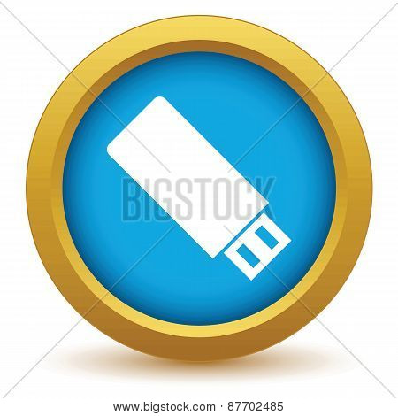Gold usb stick icon