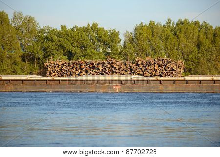 Wooden logs transported on boat