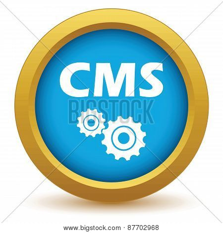 Gold cms icon