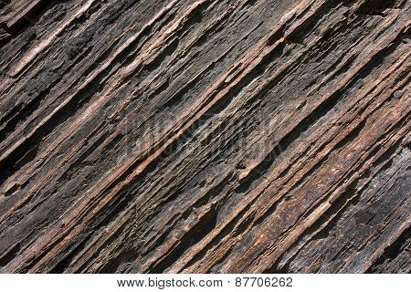 The Texture Of Shale Rock
