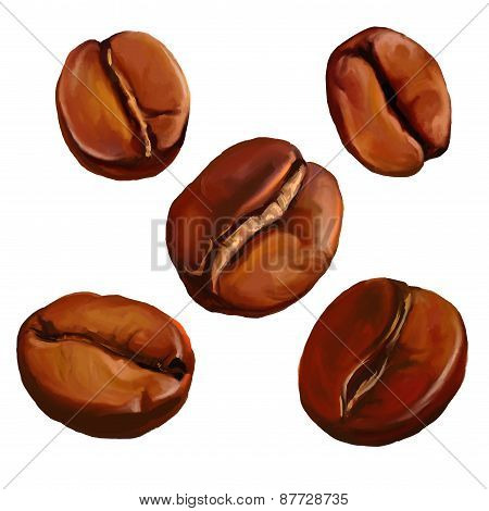 coffee beans vector illustration  painted watercolor