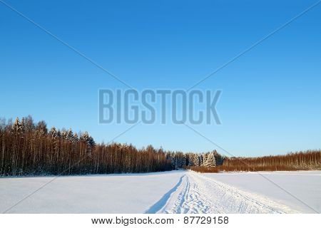 Forest, Field And Ski Track With White Snow At Sunny Winter Day