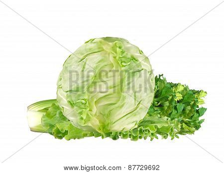 Green Cabbage And Celery Isolated On White