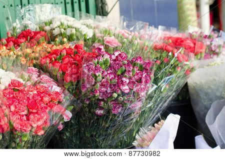 Beautiful Carnation In Flower Market, Thailand