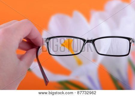 Reading Eyeglasses In Hand
