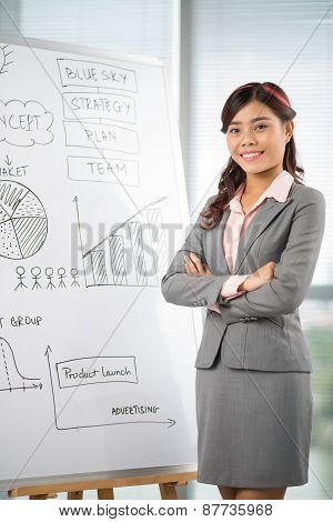 Business lady at the whiteboard