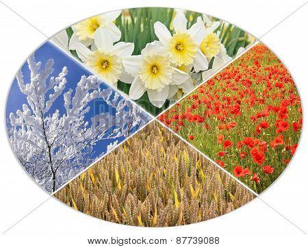 Four Seasons Circle I