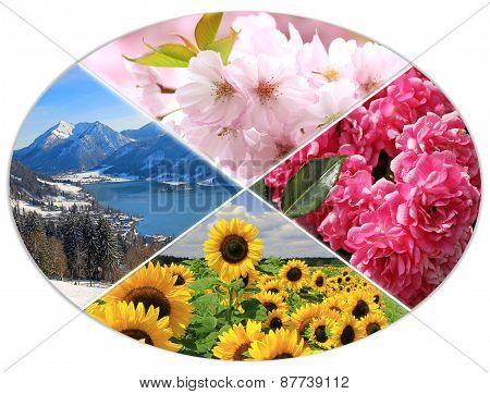 Four Seasons Circle Xi