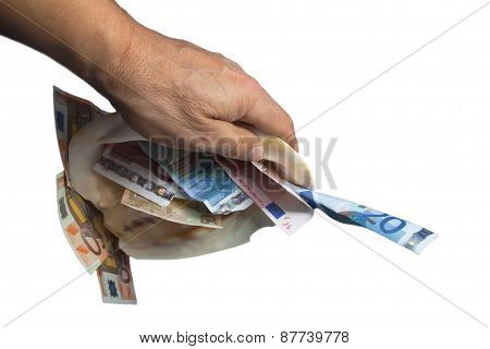 a hand is holding a sea shell with money white background.