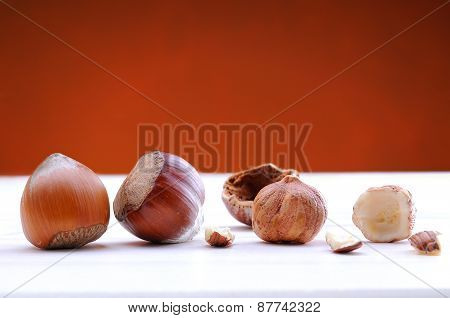Hazelnuts On A White Table And Background Brown Front View