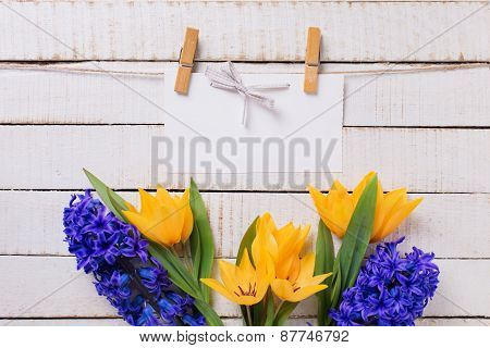 Background With Fresh Tulips, Hyacinths And Empty Tag